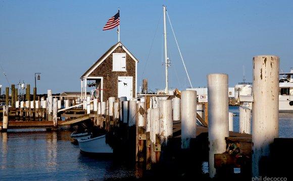 Black Dog Sailing Dock by phil