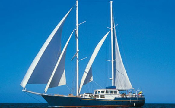 Motor Sailboats in the
