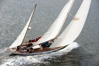 Ebony Check out sailing in the Museum of Yachting Timeless Yacht Regatta. Picture by Cory Silken.